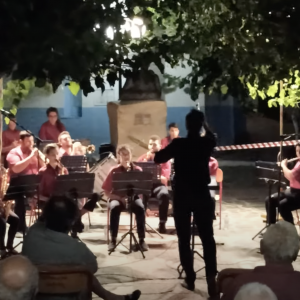 The Foundation helped the Ikaria prefecture towards funding a music teacher