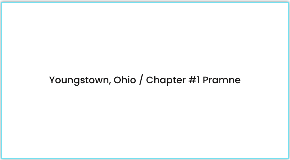 chapter 1 youngstown ohio